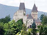 Burg  Wartenstein / Niederösterreich