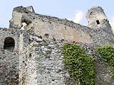 Ruine Senftenberg / Niederösterreich