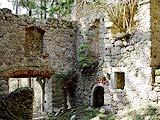 Schloss Plankenberg / Niederösterreich